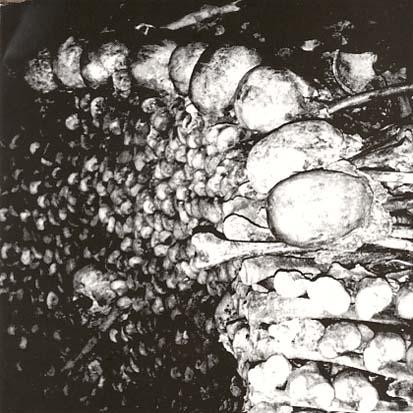 BLACK BLOOD - Cryptic Rituals - CD