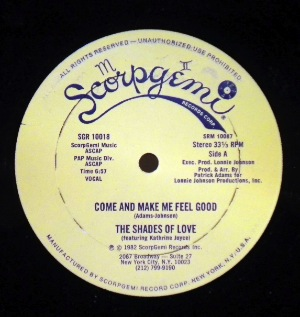 THE SHADES OF LOVE - Come and make me feel good - 12 inch 45 rpm