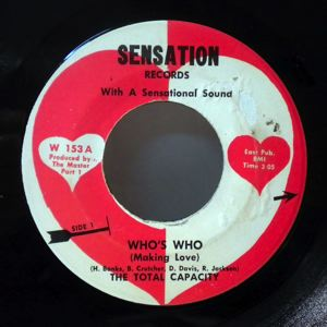 THE TOTAL CAPACITY - Who's who - 7inch (SP)