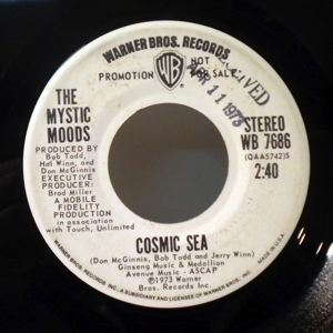 THE MYSTIC MOODS - fmaceo and all - 7inch (SP)