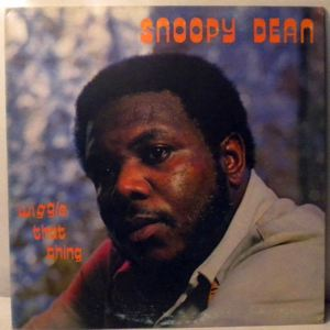 SNOOPY DEAN - Wiggle that thing - 33T