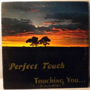 PERFECT TOUCH - Touching you - 33T