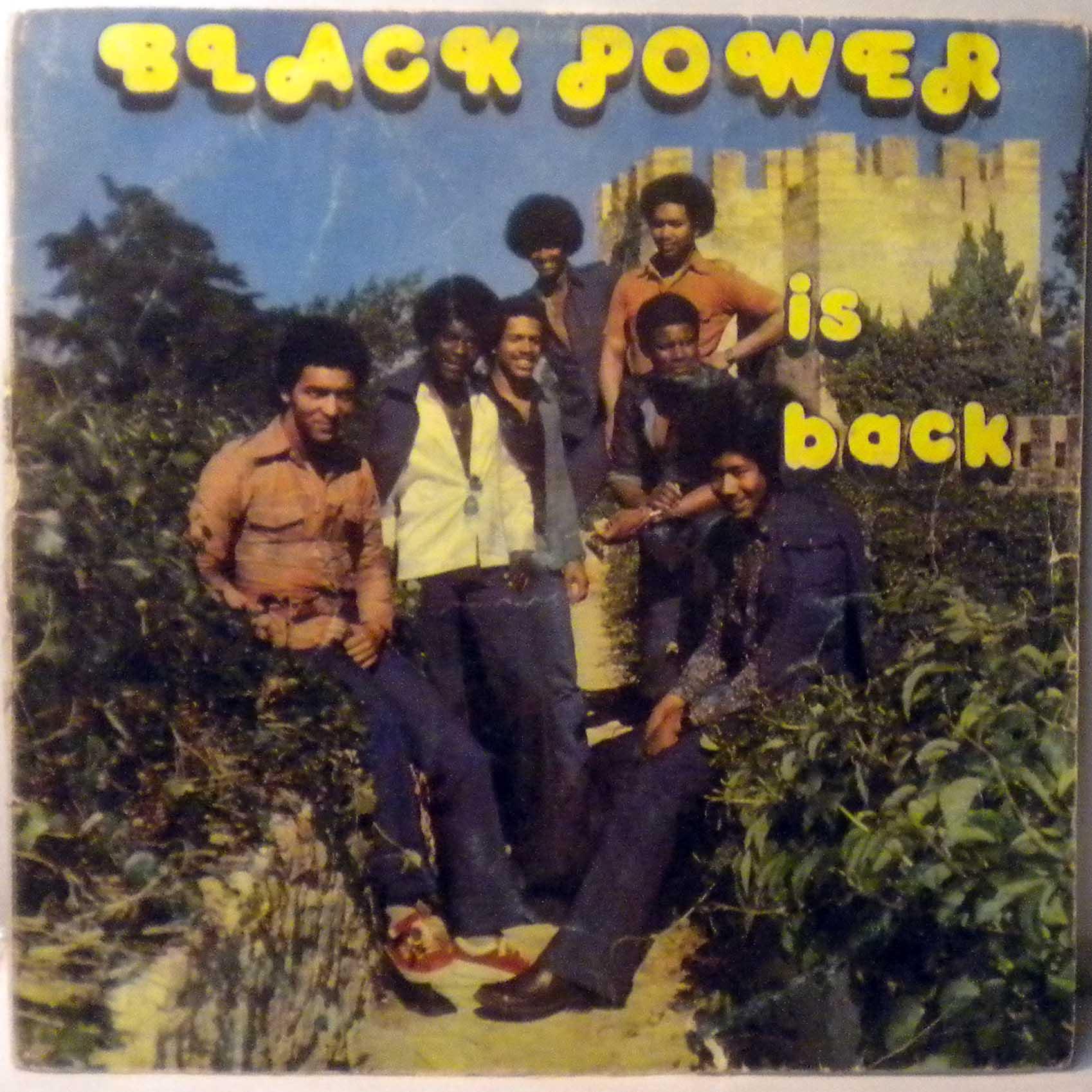 BLACK POWER - Is back - LP