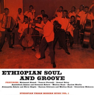 VARIOUS - Ethiopian Soul And Groove - LP