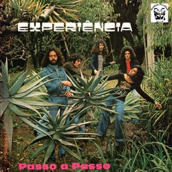 EXPERIENCIA - Passo a passo - LP