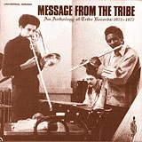 VARIOUS - Message from the Tribe - LP x 2