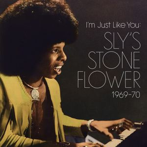 VARIOUS - Sly's stone flower 1969-1970 - 33T x 2